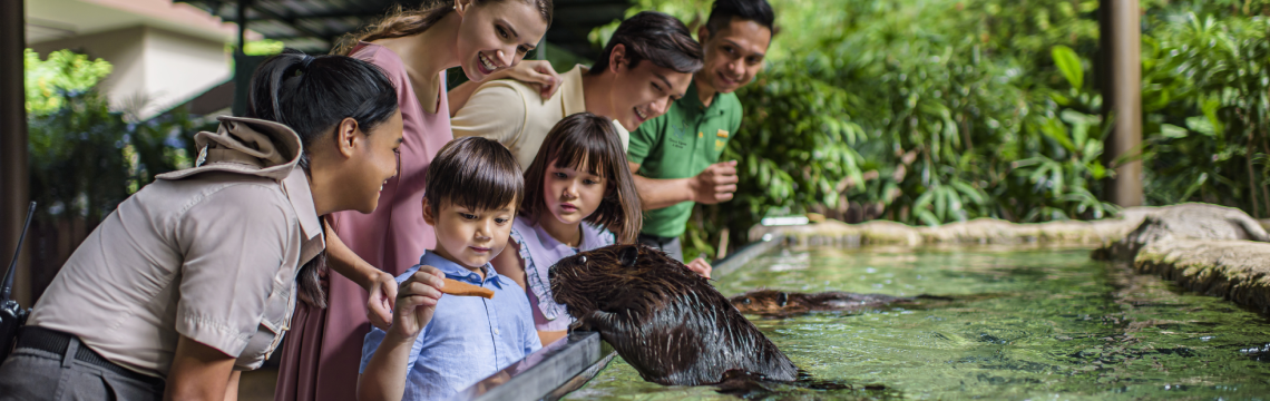 River Discovery Tour - Beaver.png-1140x360